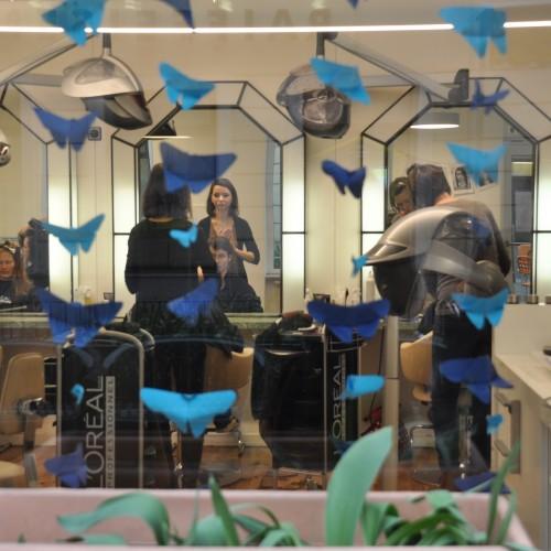 Blaue Schmetterlinge in der Auslage.